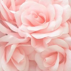 oversized crepe paper roses by paperflowergirls