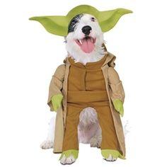 Star Wars Yoda Dog Costume #dog #costume #poshpuppyboutique