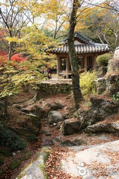 Hotel Bee - Travel tips and Travel Guides Beautiful World, Beautiful Gardens, Beautiful Places, Chinese Places, Korea Tourism, Permaculture Design, Seoul Korea, Adventure Is Out There, Shade Garden