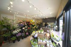 interior design for a flower shop