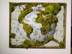 Obraz z mchem poduszkowym. www.greenalleys.pl