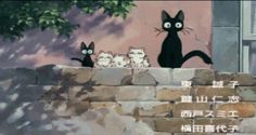 Little Jiji Chasing a Butterfly #kiki's delivery service #studio ghibli #miyazaki