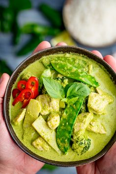Deliciously rich and aromatic Thai Green Chicken Curry with homemade curry paste. Make it mild or spicy with a vibrant creamy sauce. Thai Green Chicken Curry, Thai Green Curry Recipes, Thai Green Curry Paste, Green Curry Sauce, Curry Pasta, Curry Noodles, Homemade Curry, Paste Recipe, Health Dinner