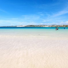 Check out this slideshow Paradise Found in Coral Bay in this list Bum-Worthy Beaches Paradise Found, Paradise On Earth, Great Places, Places Ive Been, Places To Visit, Holiday Destinations, Travel Destinations, Destin Beach, Western Australia