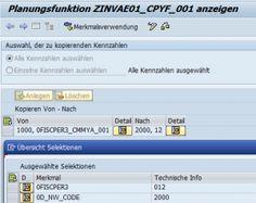 How To SAP BI - Prompt für Variablen der Planungsfunktion aufrufen