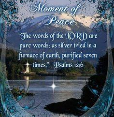Psalms 12:6 ✞ A PSALM A DAY