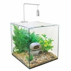 Aqua Zone 28 Coldwater Aquarium 41 x 38 x 26cm (25L