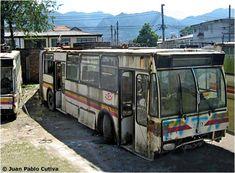 Los Trolebuses de Bogotá Busses, Budapest, History, City, Classic Trucks, Social Science, Beetle, Pictures, Historia