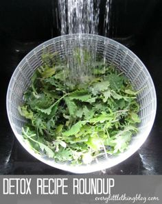 Detox Recipe Roundup   everylittlethingblog.com