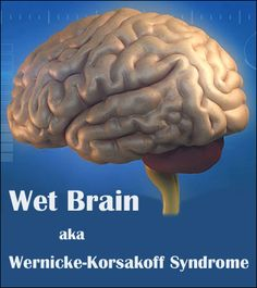 "Wernicke Korsakoff's syndrome, also known as ""Wet Brain"" is a serious neurological disorder caused by a severe lack of Vitamin B1 (thiamine) in the brain."