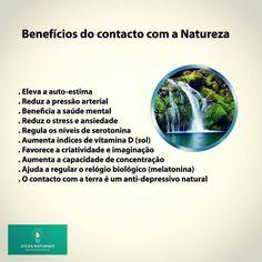 Benefícios do contacto com a Natureza  www.dicasnaturais.com  #dicas #dicasnaturais #dicassaudaveis #saudeebemestar #saudavel #natureza #vidasaudavel #viverbem
