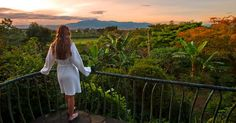 """Finca Rosa Blanca Inn, Costa Rica: The resort has earned the country's highest rating for sustainable tourism — five green leaves — and recycling efforts include turning coffee pulp into fertilizer and hiring only locals, in order to """"recycle"""" profits back into the community. http://www.hotelscombined.com/Hotel/Finca_Rosa_Blanca_Inn.htm"""