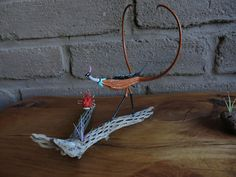Hey, I found this really awesome Etsy listing at https://www.etsy.com/listing/244904348/devils-claw-bird