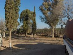 Venta campo San Gerònimo San Luis Campo. San Gerònimo.Propiedad ubicada sobre ruta 147, a 5 km de Ingreso a Aguas Termales San ... http://san-luis.evisos.com.ar/venta-campo-san-geronimo-san-luis-id-909413