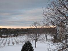 Snowy Sunset, Door County Door County Wisconsin, Best Vacations, Lodges, Cool Pictures, Maine, Doors, Sunset, Outdoor, Slab Doors