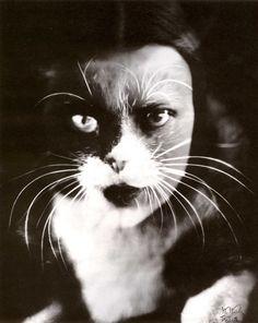 Lo + Gatto, 1932