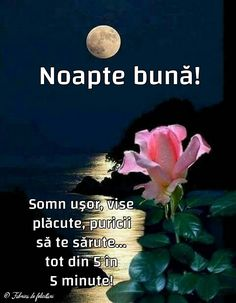 Felicitari de Noapte - Noapte bună! Good Night, Good Morning, Day, Pictures, Weddings, Good Day, Happiness, Romania, Quotes