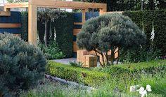 nicole fischer and daniel auderset / extending space garden, rhs chelsea 2014