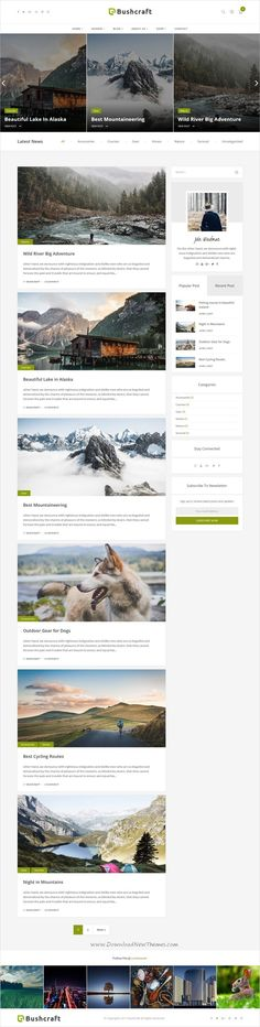 Bushcraft is clean and modern design 5in1 responsive #WordPress blog theme for #creative writer and #bloggers website download now..
