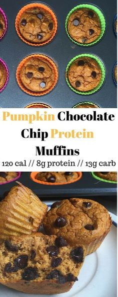 Fall and healthy eating combined, these Pumpkin Chocolate Chip Protein Muffins are packed with protein, are low carb, and less than 120 calories - Eat the Gains
