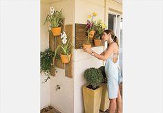 Orquideas na parede