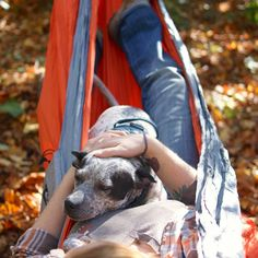 Camping with your dog? Don't forget to pack a hammock for ultimate R&R! @lifewithmutts
