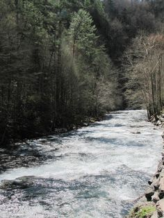 Peaceful #river in the #Smoky #Mountains