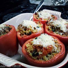 Ground Turkey Stuffed Peppers | Fancy Fork