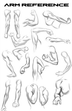 Anatomy Drawing Tutorial Lots Of Arms for Reference. by NemoNova - Arm Drawing, Hand Drawing Reference, Human Anatomy Drawing, Human Figure Drawing, Anatomy Reference, Art Reference Poses, Leg Reference, Arm Anatomy, Anatomy Art