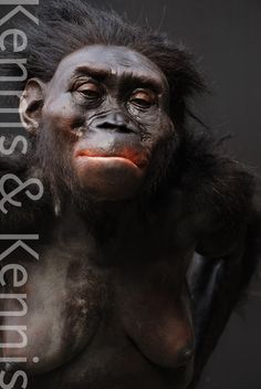 Moesgaard Museum, reconstructions of our ancestors made by Adrie and Alfons Kennis Australopithecus Lucy