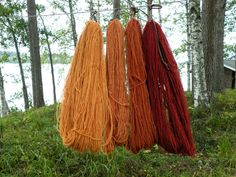 Textile Dyeing, Natural Dyeing, Yarns, Make Me Smile, Textiles, Diy Crafts, Colours, Nature, How To Make