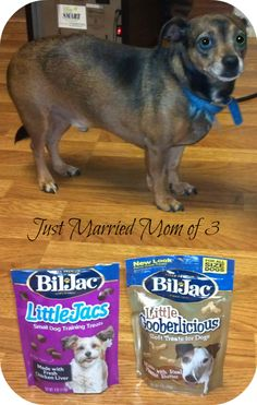Bil-Jac Dog Treats & 3 Day Test DVD #Giveaway