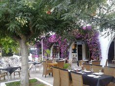 Taberna Pikapote en Alcossebre, Valencia