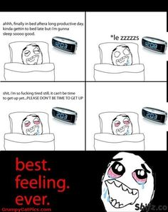 Funniest Memes of All Time | Sleeping All Night Long Is The Best Feeling Ever Funny Meme Comics ...