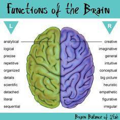 Functions of the Brain  #brainbalanceutah #leftbrain #rightbrain