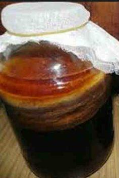 Лечебный чайный гриб