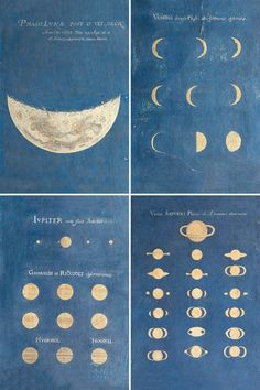 The astronomical illustration is exact but we can always dream. / Phase of the Moon, Phases of Venus, Aspect of Jupiter, Aspect of Saturn. / By Maria Clara Eimmart, 1693 - Ravenclaw, Alphonse Mucha, Constellations, Illustrations Harry Potter, You Are My Moon, Illustration Arte, Into The Wild, Joan Mitchell, To Infinity And Beyond