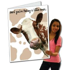 2'x3' Giant Get Well Card (Cow), W/Envelope by VictoryStore. $16.95