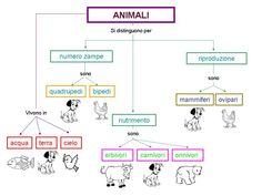 CLASSE A COLORI: Scienze: gli animali Primary Science, Elementary Science, Biology, Pixel Art, Homeschool, Diagram, Education, Google, 3