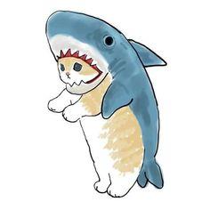 A cat-shark - cute post - Imgur Kitten Drawing, Cute Cat Drawing, Cute Little Drawings, Cute Cartoon Drawings, Cute Animal Drawings, Cartoon Art, Shark Drawing, Cat Shark, Shark Art