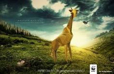 The most creative WWF advertisements. We share the good, bad and ugly of advertisement. http://how2.releasemyad.com/