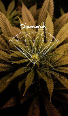 Wallpapers iPhone 5 (diamond,weed)