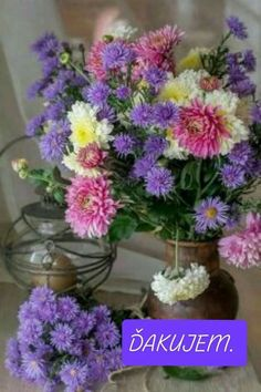 Amazing Flowers, Love Flowers, My Flower, Purple Flowers, Flower Images, Flower Pictures, Garden Trees, Trees To Plant, Beautiful Flower Arrangements
