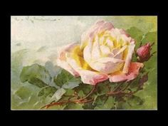 Much information, and many photos of Catherine Klein's rose paintings, on this video.~<3K8<3~