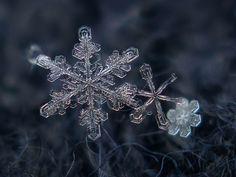 Snowflake Macro Photos Captured Using a Canon PowerShot Compact Camera