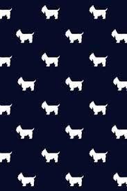 Resultado de imagem para wallpapers dachshund