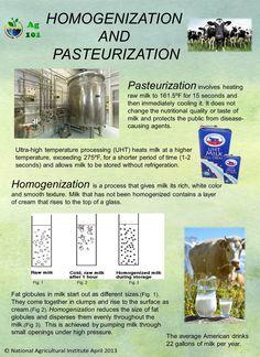 Homogenization and Pasturization
