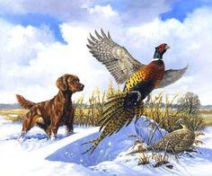 Linda Picken Art Studio / Irish Setter and Pheasant.jpg