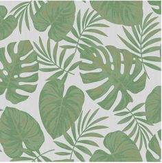 🌴🌴 This tropical green wallpaper features a raised leaf pattern on top of a blown textured background. The leaves feature a distressed texture print and metallic highlights. 🌴🌴 #tropicalwallpaper #wallpapers #featurewall Print Wallpaper, Textured Wallpaper, Nature Wallpaper, Textured Background, Grey And Green Wallpaper, Green And Grey, Distressed Texture, Tropical Wallpaper, Leaf Texture