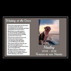 Beautiful Black and White Cat Memorial Pet Loss Bereavement Rainbow Bridge Fridge Magnet plaque gift Pet Quotes Dog, Pet Grief, Patterdale Terrier, Pet Sympathy Cards, The Beautiful South, Beautiful Babies, Heaven Quotes, Diy Simple, Bereavement Gift